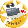 Видеограф, Тула, 1 место